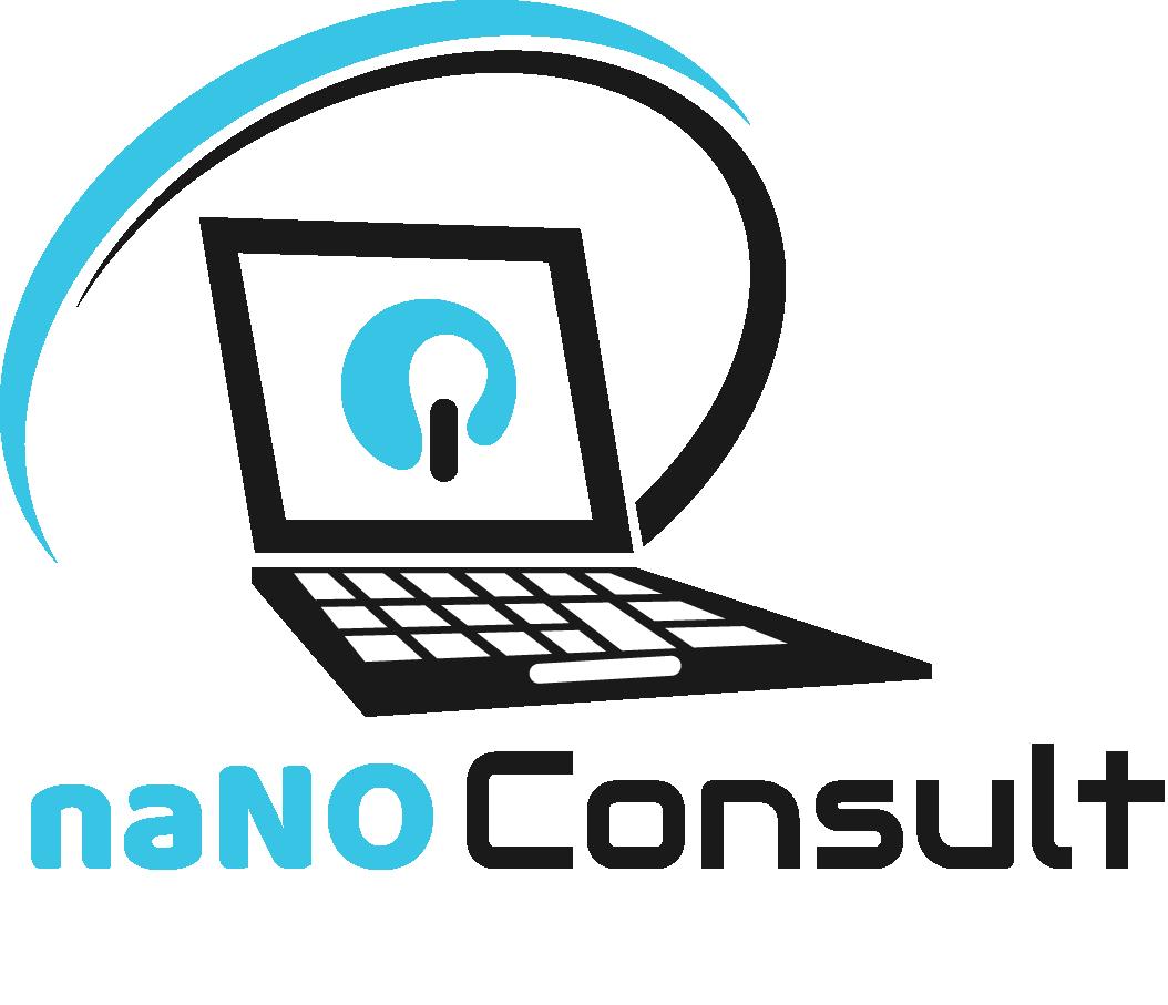 naNO Consult Logo